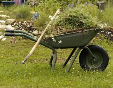 Harke frei für den Frühjahrsputz im Garten